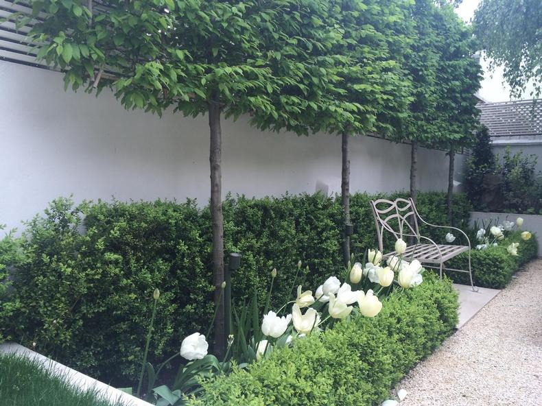 Garden Landscaper in Central London and Knightsbridge